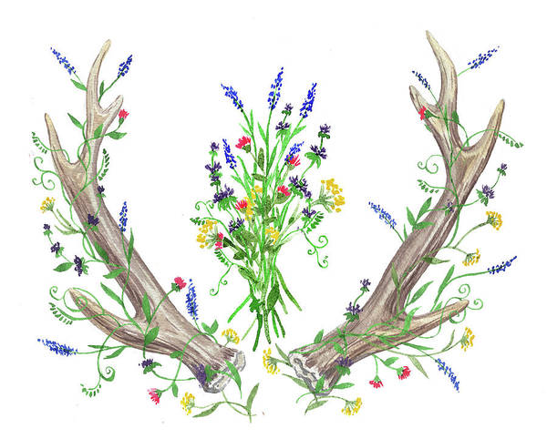 Antlers Painting - Wild Flowers And Antlers Watercolor by Irina Sztukowski
