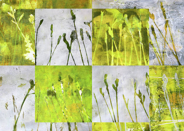 Prairie Grass Painting - Wild Grass Collage 3 by Nancy Merkle