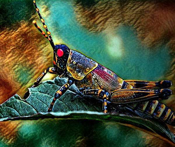 Digital Art - Wild Hopper by Artful Oasis