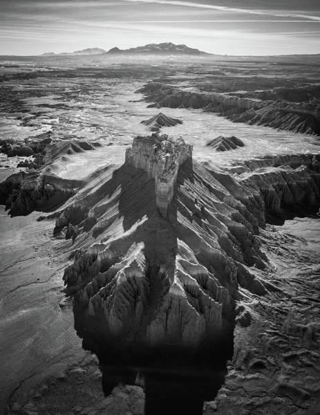 Photograph - Wild Horse by Alpha Wanderlust