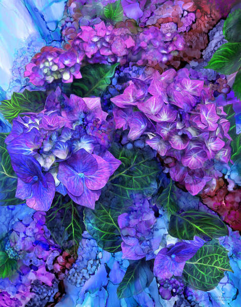 Mixed Media - Wild Hydrangeas by Carol Cavalaris