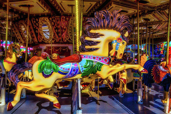 Photograph - Wild Magical Horse Ride by Garry Gay