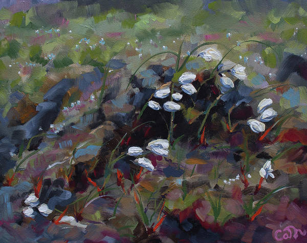 Painting - Wild Oghille Bog Cotton by Catherine Considine