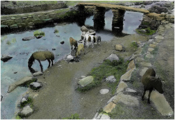 Photograph - Wild Ponies Under The Bridge In Wales by Wayne King
