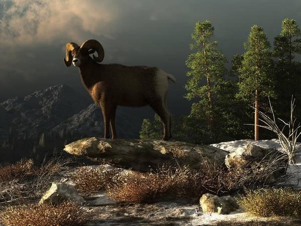 Wall Art - Digital Art - Wild Ram by Daniel Eskridge