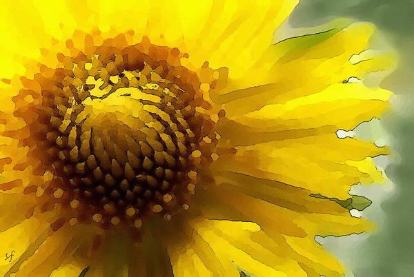 Digital Art - Wild Sunflower Up Close by Shelli Fitzpatrick