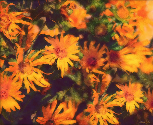 Photograph - Wild Sunflowers by Anna Louise