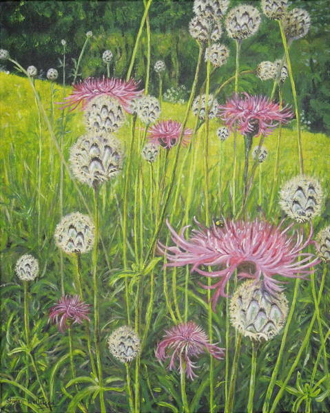 Painting - Wild Thistles by Shirley Wellstead
