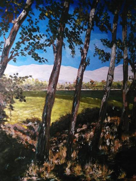 Painting - Wild Trees by Ray Khalife