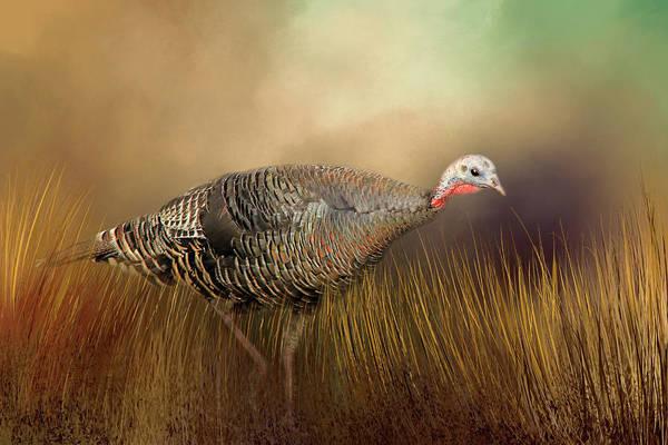 Turkey Feather Wall Art - Photograph - Wild Turkey Hen by Donna Kennedy