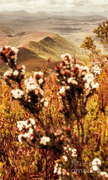 Mounted Photograph - Wild West Mountain View by Jorgo Photography - Wall Art Gallery