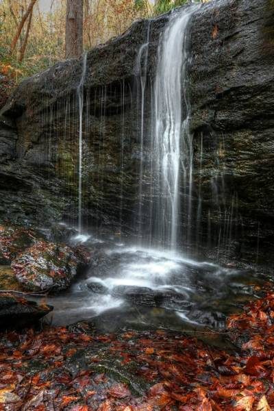 Photograph - Wildcat Branch Falls Upper by Carol Montoya