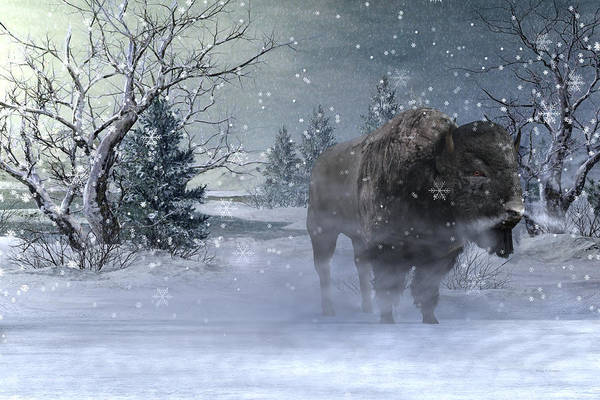 Winter Time Digital Art - Wilderness by Betsy Knapp