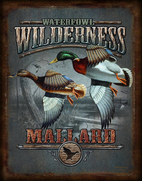 Signs Painting - Wilderness Mallard by JQ Licensing