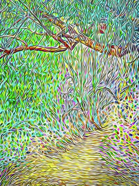 Digital Art - Wilderness Pathway by Joel Bruce Wallach
