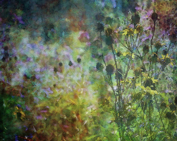 Photograph - Wildflower Impression 4462 Idp_2 by Steven Ward
