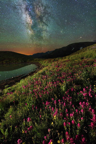 San Juan Mountains Photograph - Wildflower Milky Way Reflection by Mike Berenson