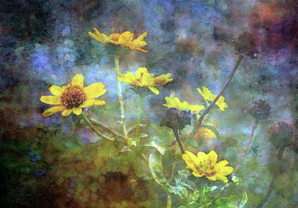 Photograph - Wildflowers Against A Stormy Sky 5649 Idp_2 by Steven Ward