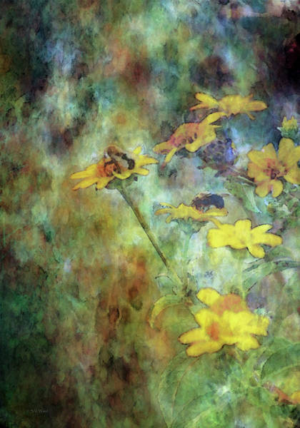 Photograph - Wildflowers And Bees 5675 Idp_2 by Steven Ward