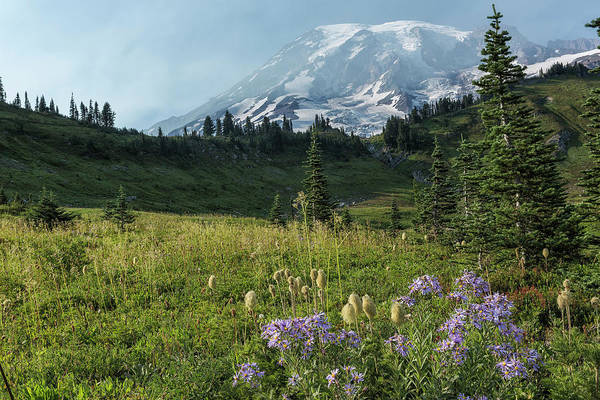 Photograph - Wildflowers And Mount Rainier by Belinda Greb