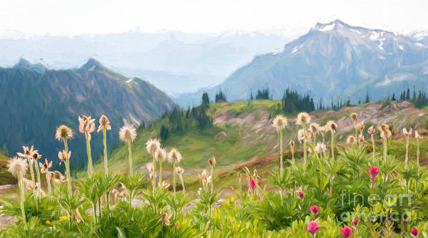 Photograph - Wildflowers And The Tatoosh by Sharon Seaward