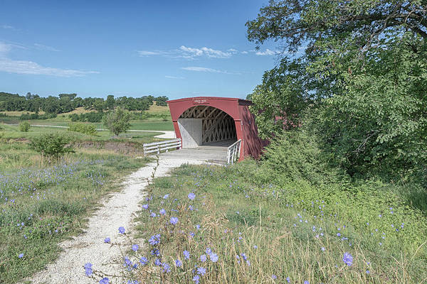 Photograph - Wildflowers At Hogback Bridge 2 by Susan Rissi Tregoning