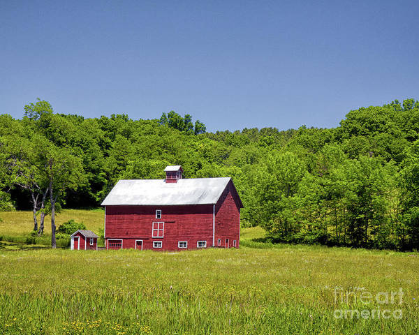 Photograph - Wildflowers Barn by Rod Best