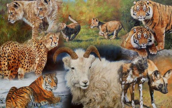 Mountain Lion Painting - Wildlife Collage by David Stribbling