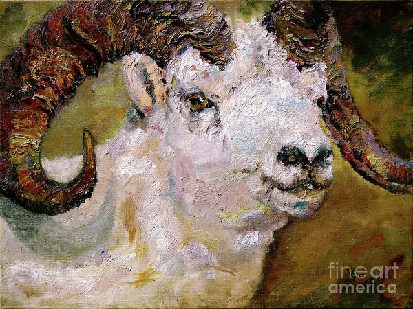 Painting - Wildlife Portrait Dall Sheep Ram by Ginette Callaway