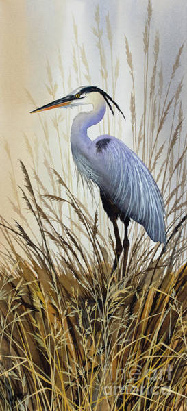 Wall Art - Painting - Wildlife Solitude by James Williamson