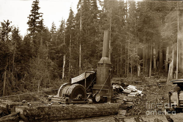 Photograph - Willamette Steam Donkey Logging Circa 1915 by California Views Archives Mr Pat Hathaway Archives