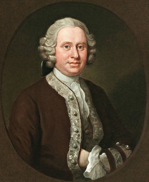 Painting - William Fitzherbert by William Hogarth
