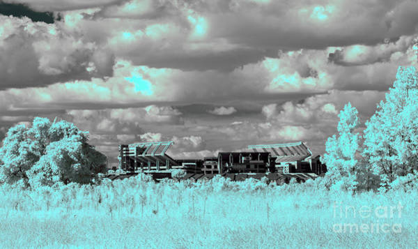 Photograph - Williams - Brice In Ir by Charles Hite