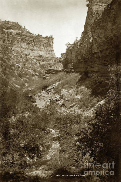 Photograph - Williams Canon Colorado Circa 1880 by California Views Archives Mr Pat Hathaway Archives
