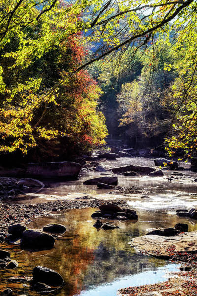 Wall Art - Photograph - Williams River In Autumn by Thomas R Fletcher