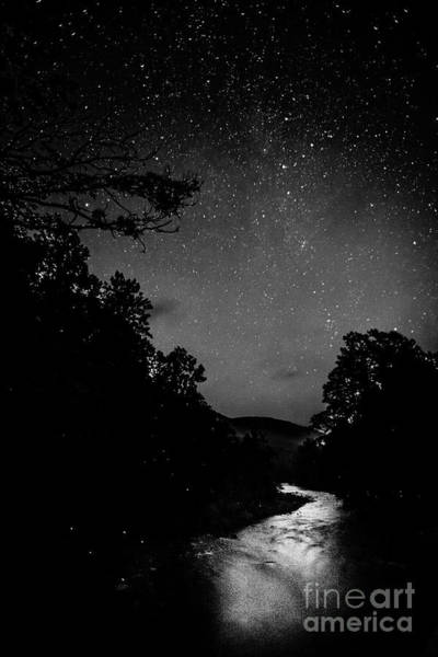 Photograph - Williams River Starlight And Fireflies by Thomas R Fletcher