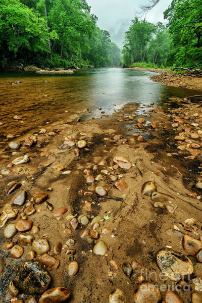 Photograph - Williams River Warm Spring Rain by Thomas R Fletcher