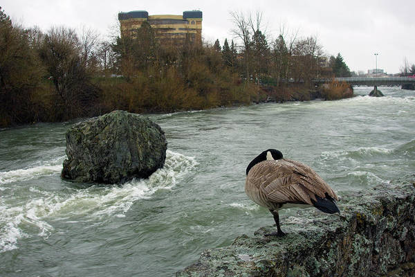 Wall Art - Photograph - Willie Willey Rock - Riverfront Park - Spokane by Daniel Hagerman