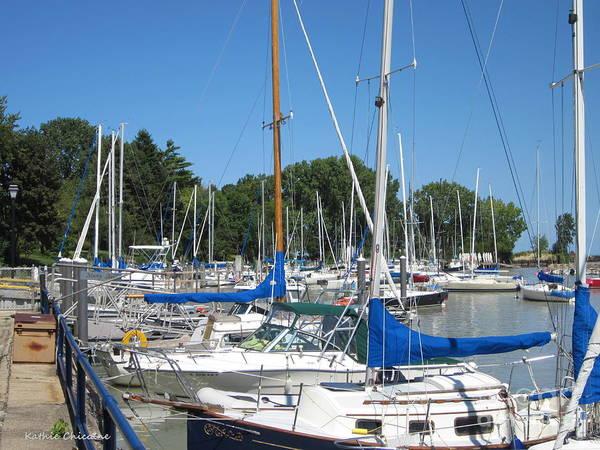 Photograph - Wilmette Harbor by Kathie Chicoine