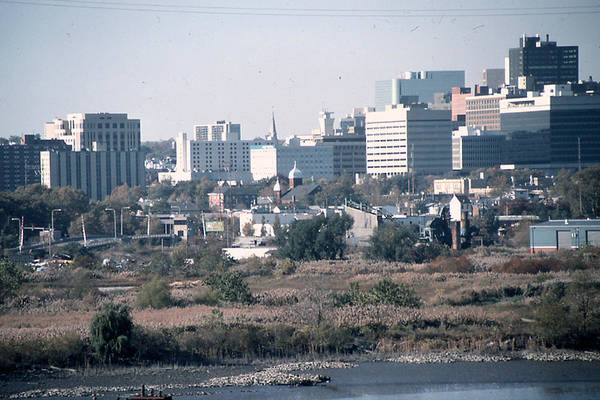 Photograph - Wilmington's Eastside Skyline by Emery Graham