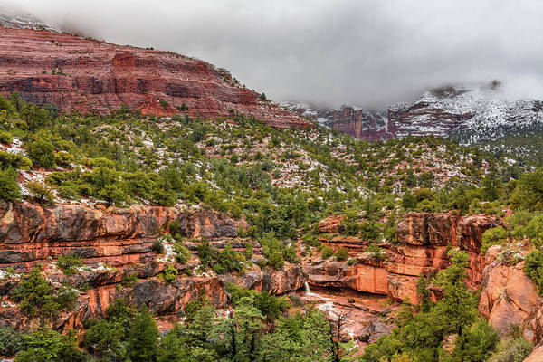 Photograph - Wilson Canyon by Racheal Christian