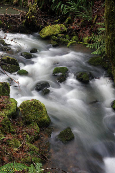 Photograph - Wilson Creek #15 by Ben Upham III
