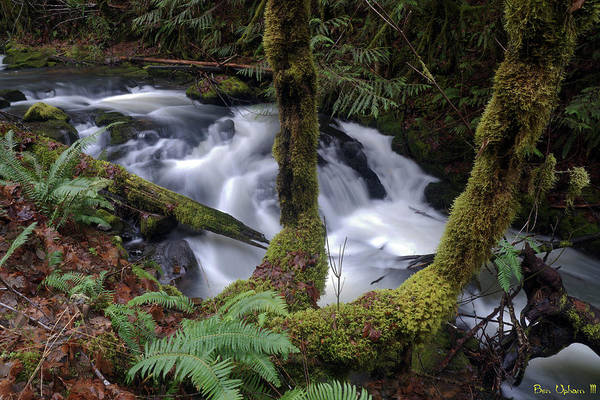 Photograph - Wilson Creek #16 by Ben Upham III