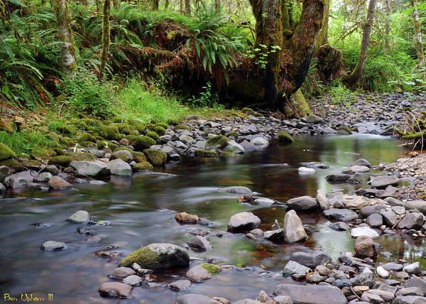 Photograph - Wilson Creek #3 by Ben Upham III