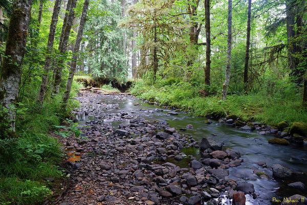 Photograph - Wilson Creek #5 by Ben Upham III