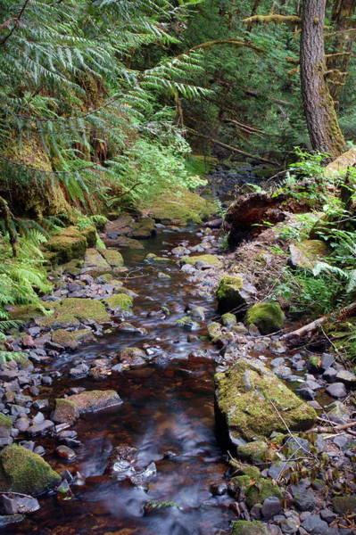 Photograph - Wilson Creek #7 by Ben Upham III