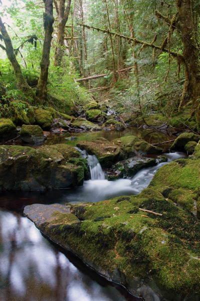 Photograph - Wilson Creek #9 by Ben Upham III