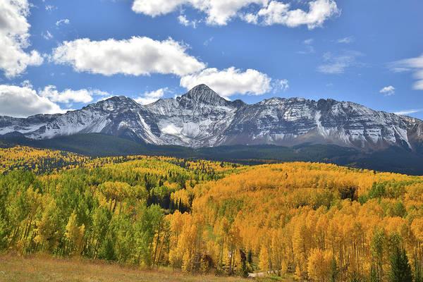 Photograph - Wilson Mesa Aspen Groves by Ray Mathis