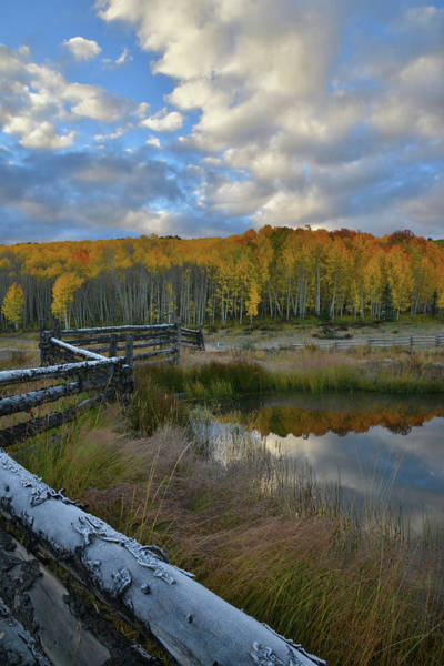 Photograph - Wilson Mesa Ranch Scene by Ray Mathis