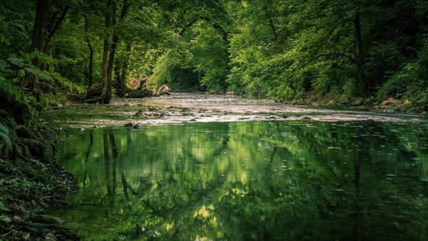 Photograph - Wilson's Creek by Allin Sorenson